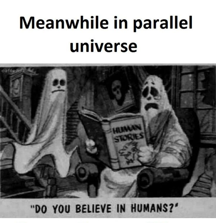 In Parallel Universe