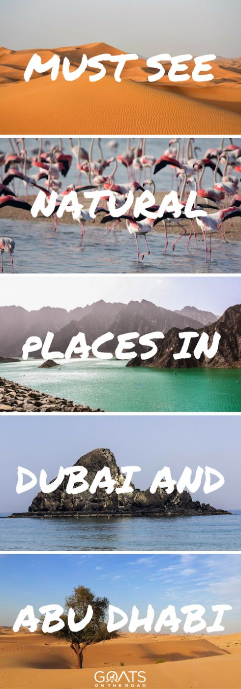 6 Must See Natural Attractions in Dubai u0026