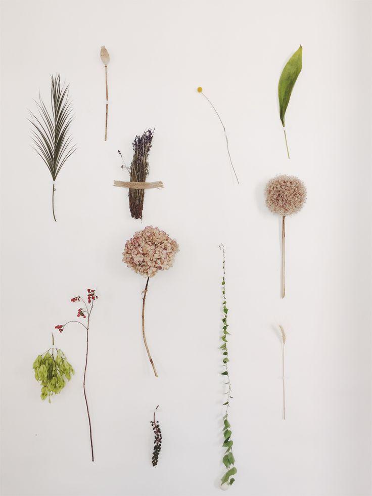 Summer wall decoration (Hortensia, Allium Giganteum, Poppy, Lavender).