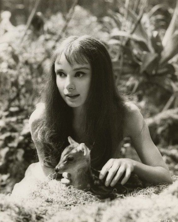 Audrey Hepburn and Ip, her pet fawn.