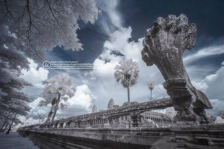Bodyguard of Angkor Wat temple in Infrared