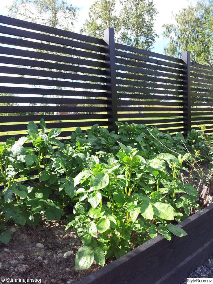 Plank och odlingslådor