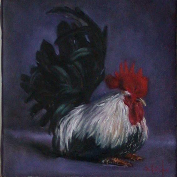 coq sur fond mauve - Peinture,  20x20 cm ©2009 par Serge KRIEF - Peintre -                            Art figuratif, coq, animaux