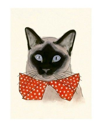Siamese Cat Art  4 for 3 SALE Red Bow Tie  4 X 6 by matouenpeluche, $6.25
