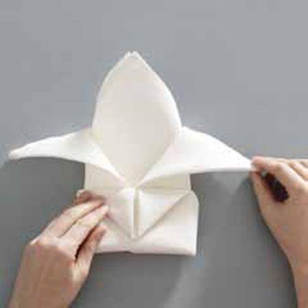 Serviette falten leicht gemacht: Mit dieser Anleitung lernen Sie Schritt für Schritt wie Sie aus Ihren Servietten mehr machen und Ihre