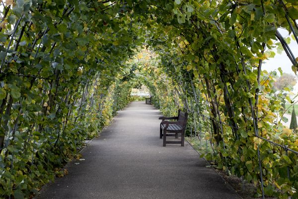 kensington palace orangery gardens AND OTHER SECRET GARDENS IN LONDON