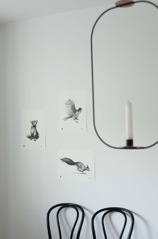 Styling work for Teemu Järvi Illustrations by Pinja Forsman