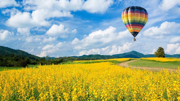 Fototapet 3D Campie si balon de aer colorat