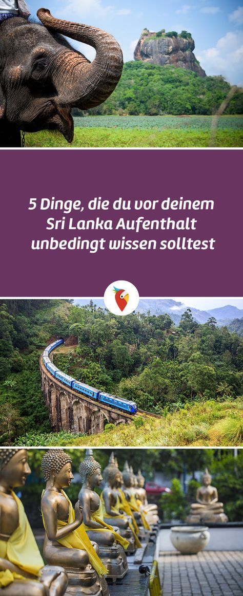 5 Dinge, die du vor deinem Sri Lanka Aufenthalt unbedingt wissen solltest