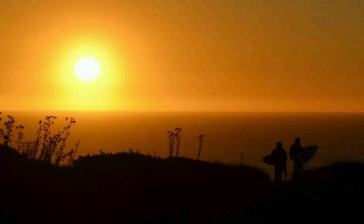 Sunset, algarrobo