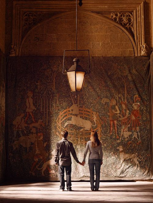 Harry and Ginny enter the Room of Hidden Things. #HalfBloodPrince #RoomofRequirement
