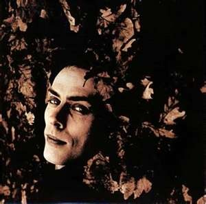 Peter Murphy - i dont know who this is, but interesting face.