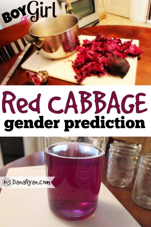 Red Cabbage Gender Prediction Test | Boy or Girl?