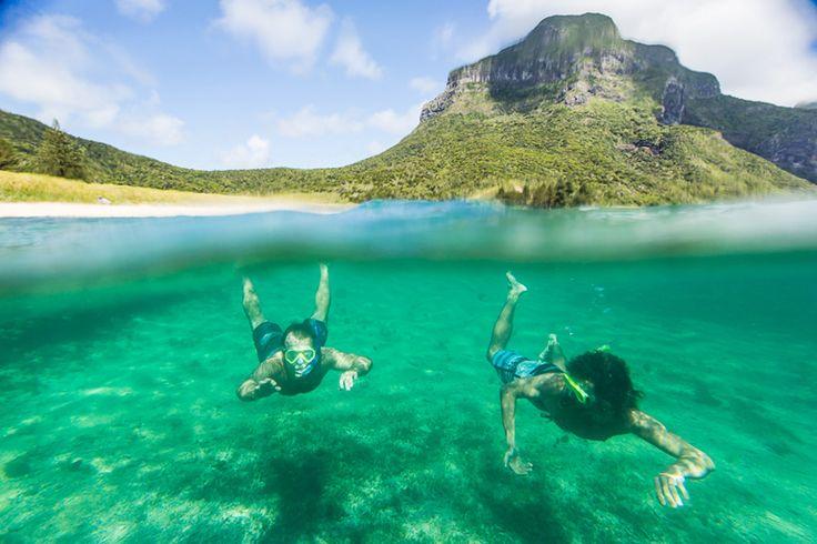 Snorkelling near Johnsons Reef | Lord Howe Island