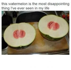 disappointing watermelon meme | This watermelon is the most disappointing thing I've ever seen in my ...