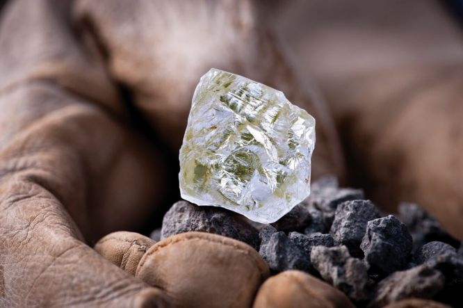 The Foxfire diamond is the largest known uncut, gem-quality diamond mined in North America. The diamond will be on display for three months at the Smithsonian's National Museum of Natural History, Nov. 17 through Feb. 16, 2017. This will be the first time it has been made available to the public. Weighing more than 187 carats, the Foxfire diamond will be presented alongside the renowned Hope diamond in the Harry Winston Gallery.