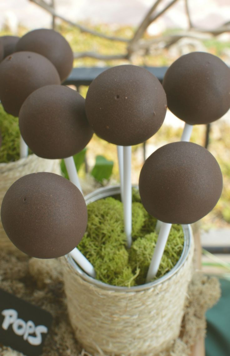 Cakepops en mesa dulce Safari / Cakepops on Safari Candy Table