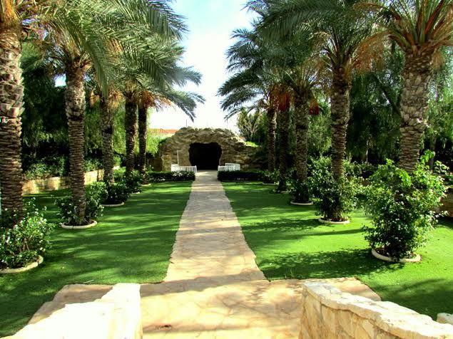 68 best cyprus weddings images on pinterest perfect wedding olympian gardens olympic lagoon resort aiya napa cyprus x junglespirit Choice Image