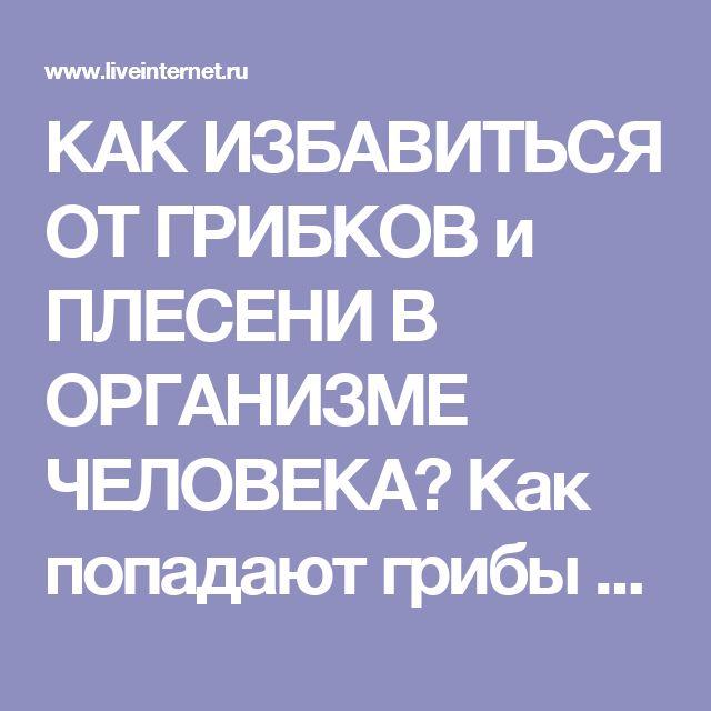 КАК ИЗБАВИТЬСЯ ОТ ГРИБКОВ и ПЛЕСЕНИ В ОРГАНИЗМЕ ЧЕЛОВЕКА  Как попадают грибы и плесень в организм. . Обсуждение на LiveInternet - Российский Сервис Онлайн-Дневников