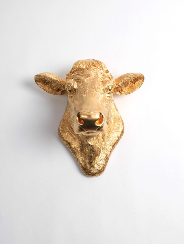 Black Cow Wall Decor : Best ideas about cow head on skull art