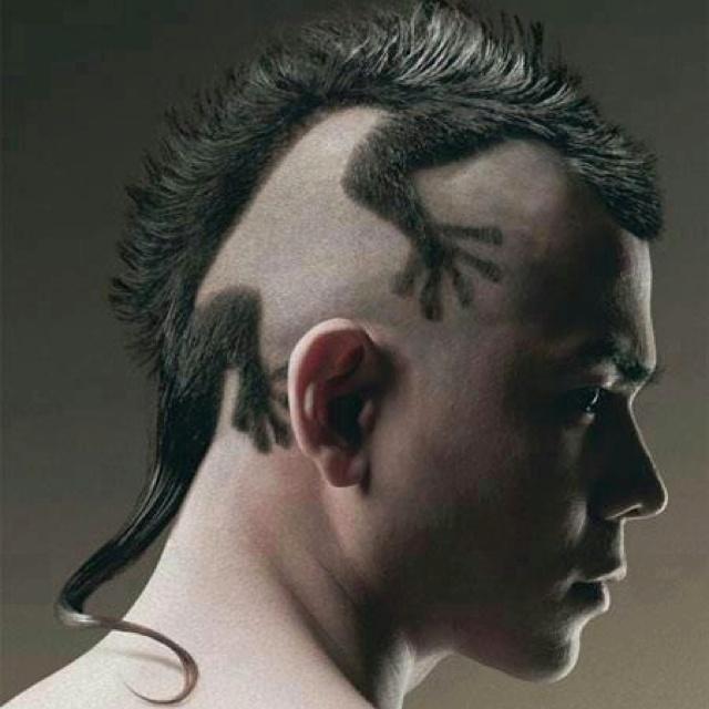 Lizard hair...