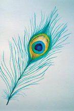 dubbele kaart 227 pauweveer brechtje duijzer