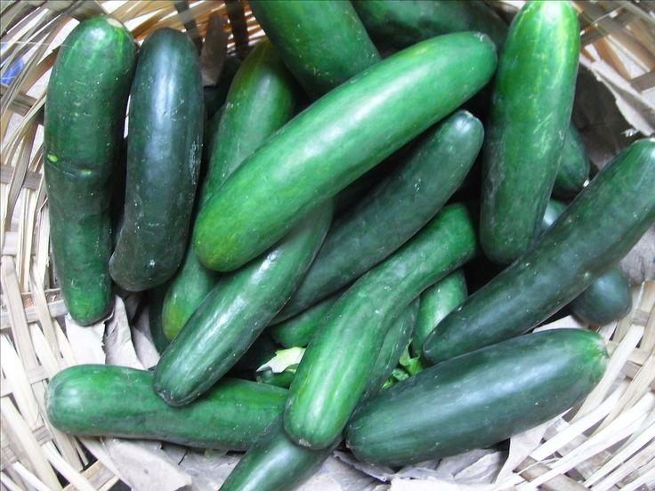 Health Benefits - Cucumbers