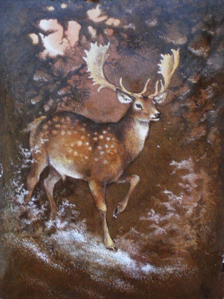 Фанере, открытки олень