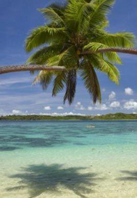 So sieht ein tropisches Paradies aus! Das sind die schönsten Strände der Welt!