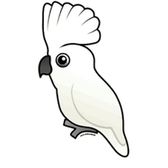 12 Materi Mewarnai Gambar Burung Nan Unik | WarnaGambar.com