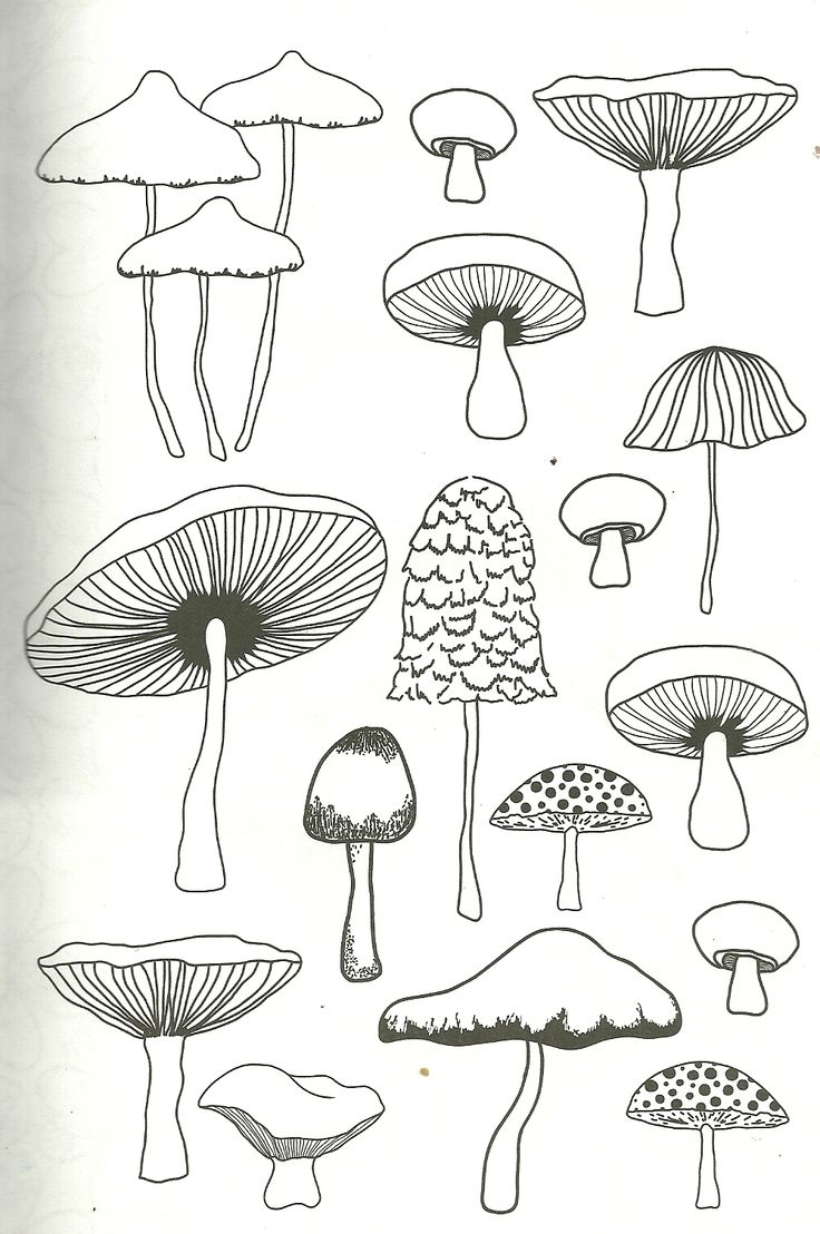 mushroom coloring page for adults