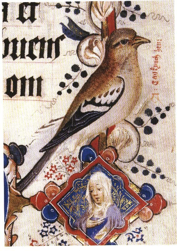 Birds in medieval art - Szukaj w Google