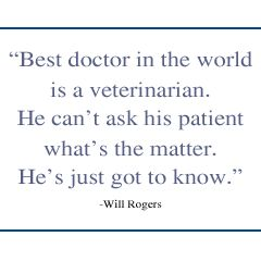 veterinarian quotes | Click photo to learn more about each veterinarian.