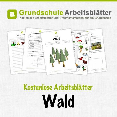 Kostenlose Arbeitsblätter und Unterrichtsmaterial für den Sachunterricht zum Thema Wald in der Grundschule. – Stephanie Hillebrand
