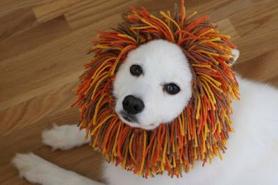 Puppie's Lion Snood for halloween: Free Patterns by ChemKnits