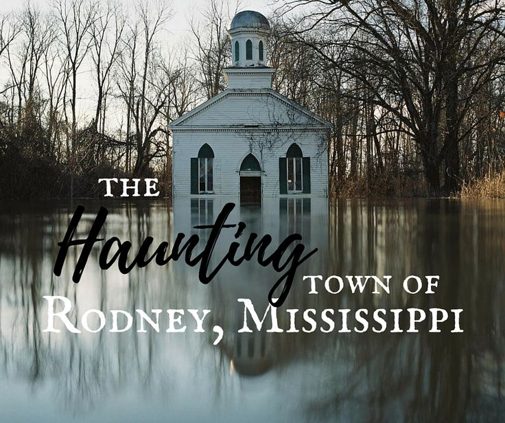 Drive the Mississippi backroads between Natchez and Vicksburg to discover ancient ruins, explore a ghost town, and eat the world's best fried chicken.