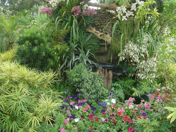 96 best Garden Plants images on Pinterest | Garden plants, Patio ...
