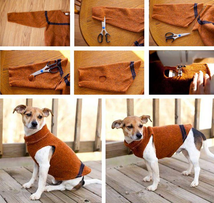 Riutilizzare i maglioni di lana - Maglioncino per cane