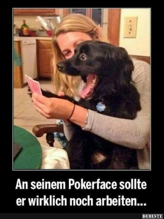 – #grabsprüchelustighumor #humorlustigbilder #humoristischlustig #lustighumor