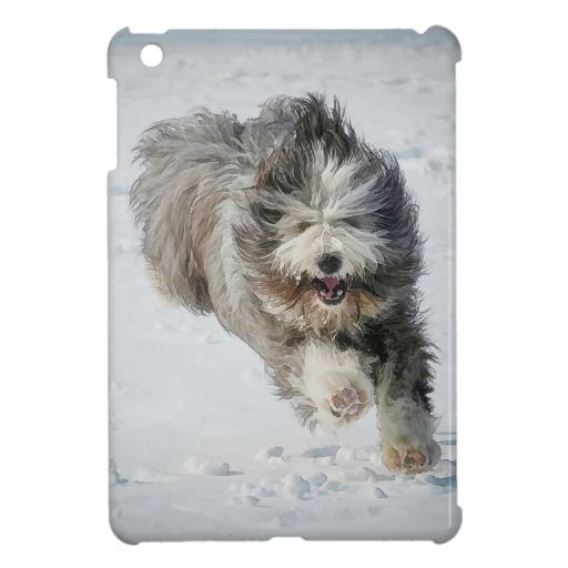 Case Savvy iPad Mini  Bearded collie running in snow