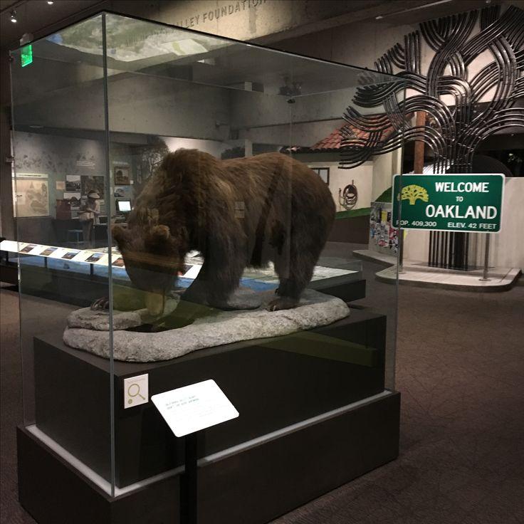 Pantyhose fetish oakland museum of california teens