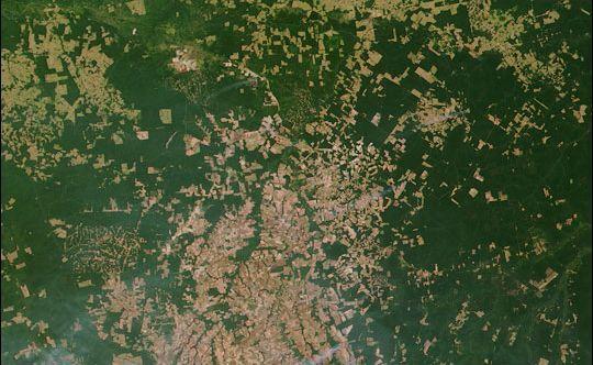 La déforestation en Amazonie vue de l'espace