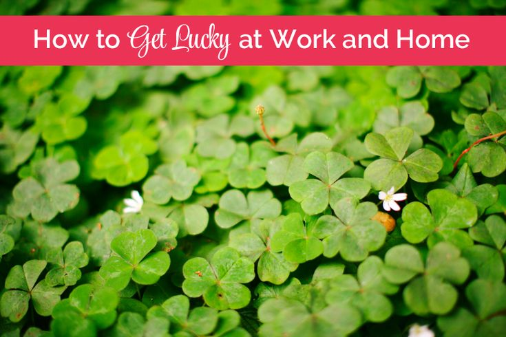 How to Get Lucky at Work and Home - @Sage Grayson  Life Editor | How working hard and finding gratitude in life can give you the life you dream