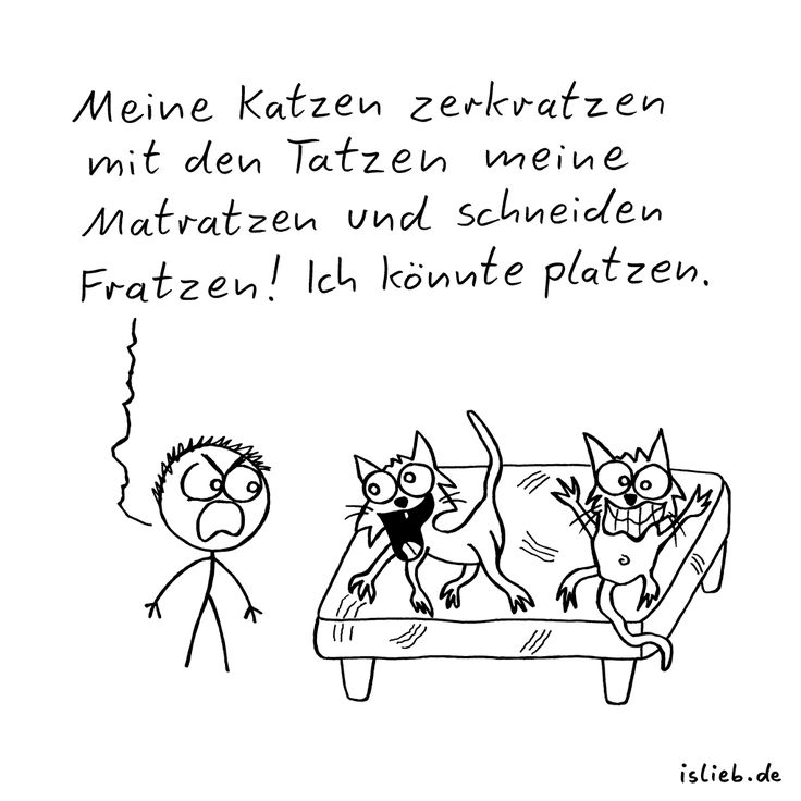 Matratzen comic  69 best islieb images on Pinterest | Envelope, Funny sayings and ...