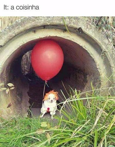 IT: a coisinha