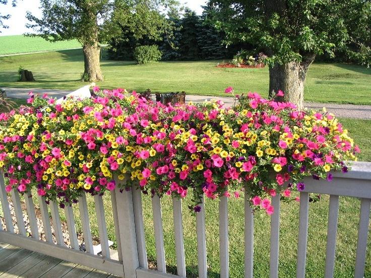 Flower Baskets For Railings : Deck planter patio