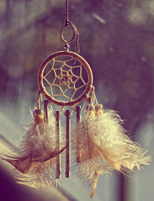 Dreamy And Classic Boxwood Gardens: 17 Best Images About Dream Catchers/Eagles On Pinterest