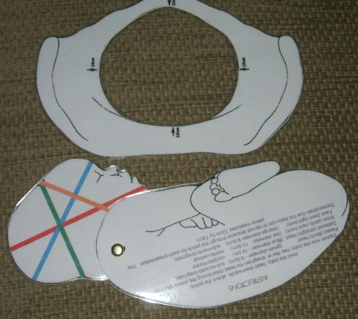 2D laminated baby & pelvis training/teaching aid - ideal for student midwife