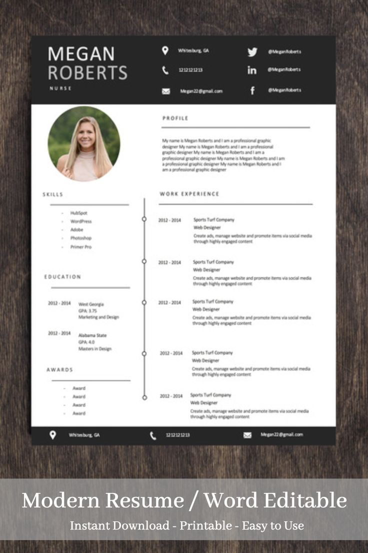 Professional Resume Template for Word Two Page Resume