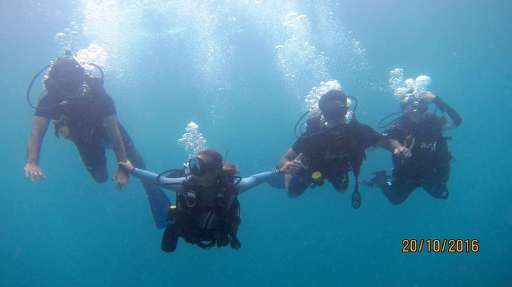 10 best scuba diving holidays phuket thailand images on pinterest diving phuket thailand and - Best dive trips ...